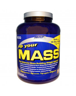 Up Your Mass, Fudge Brownie, 4.7 lbs (2154 g